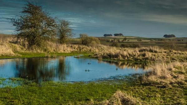 Richardson Pond by Bore07TM