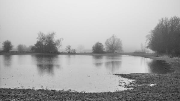 Fog and Flood II by Bore07TM