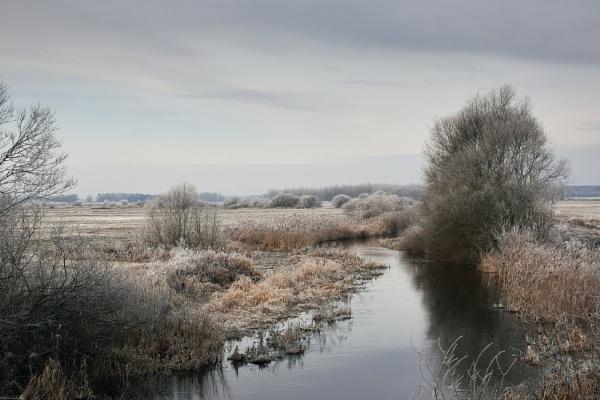 Winter morning (2) by LotaLota