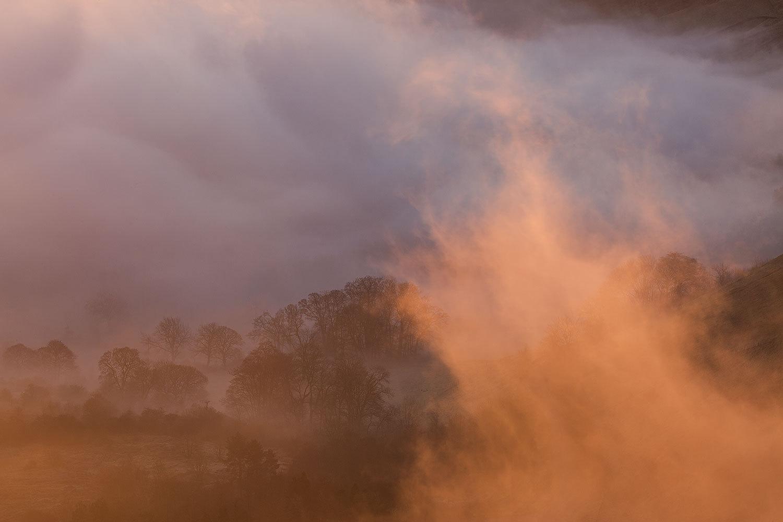 Mist Illuminated