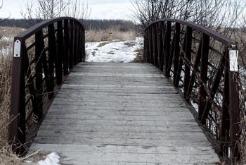 a Bridge at the Dofasco 2000 Trail