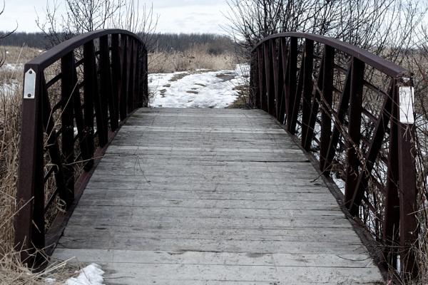 a Bridge at the Dofasco 2000 Trail by TimothyDMorton