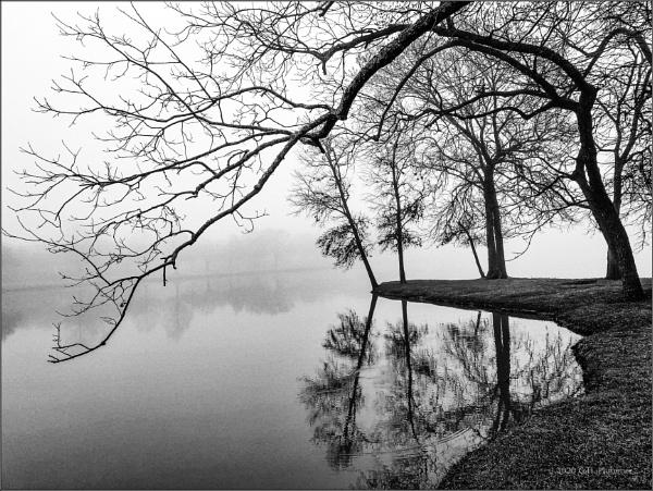 Stillness - morning fog by GeorgeP