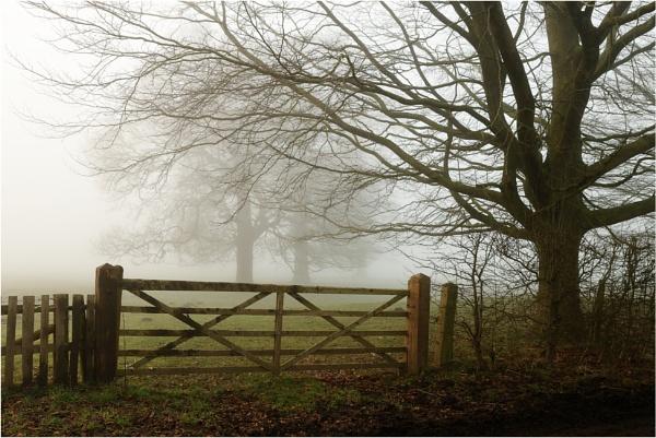 Gate 8 by dark_lord