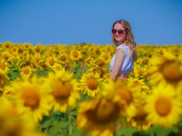 Summer by Stevetheroofer