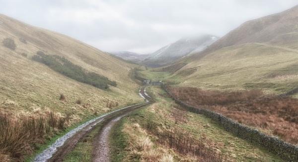 Follow the muddy path by BillRookery