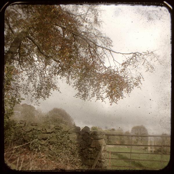 Dalebank - TtV by JMRead
