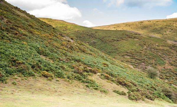 Shropshire Hills 4 by kdw