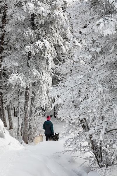 Return to Narnia... by Jasper87