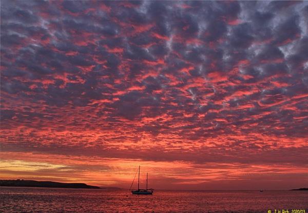 Red in Morning. by Jayar