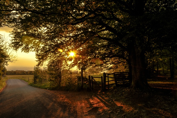 Sunset, Cleeve Common by woodini254