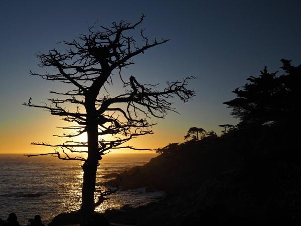 Monterey sunset by waltknox