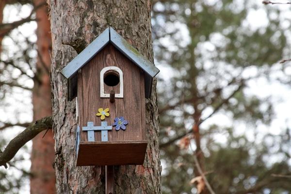 Nesting box - 2 by LotaLota