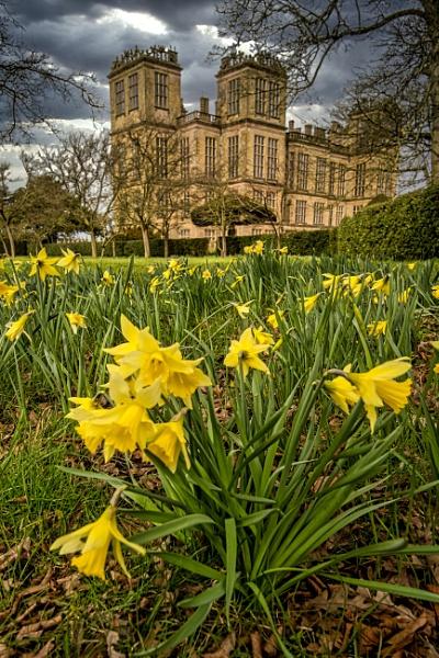 Hardwick Hall  Gardens