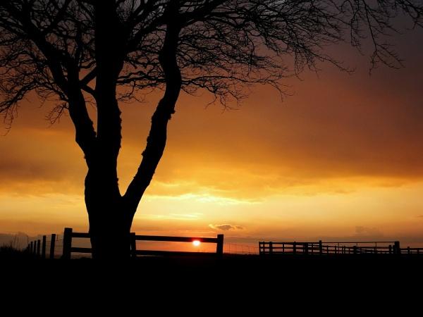 SUNSET by ianmoorcroft