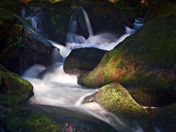 Golitha Falls, River Fowey by trailguru