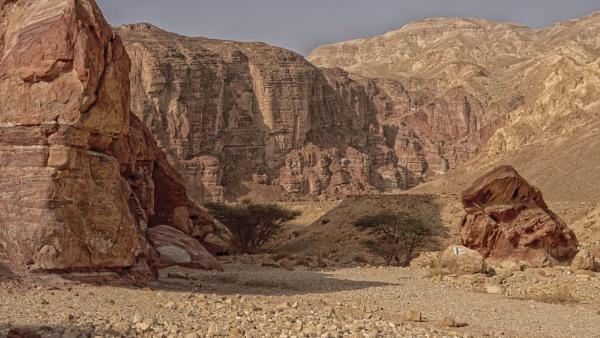 Desert Landscape by ubaruch
