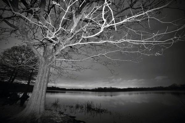 Lake Houston  @ night, 5 month versary by PetesPix