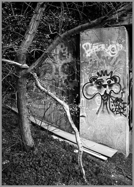 Between Branches by AlfieK