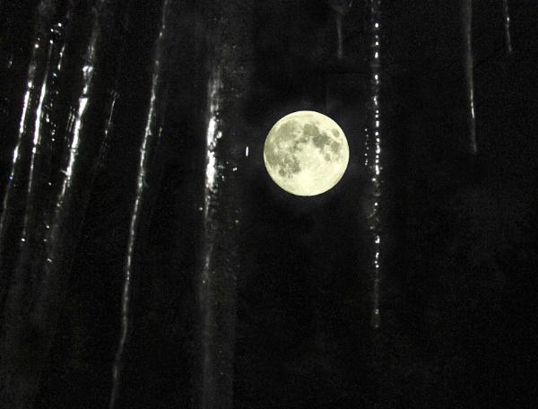 Winter Moon by Aeros