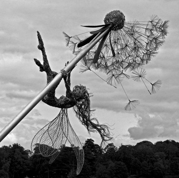I Believe In Fairies. by Debmercury