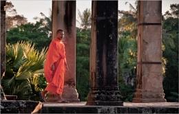 Angkor Wat resident