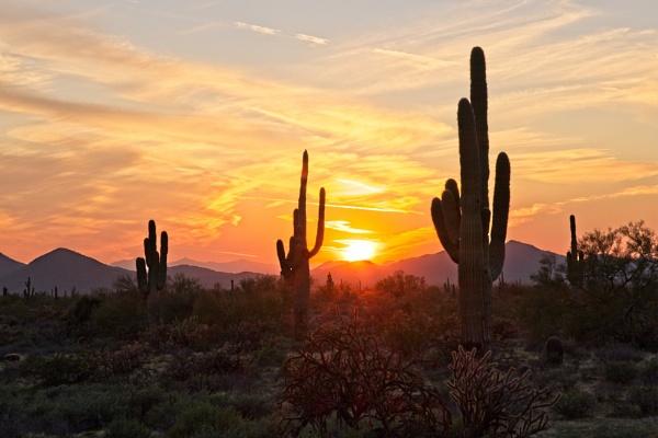 Desert Sunset by G_Stox