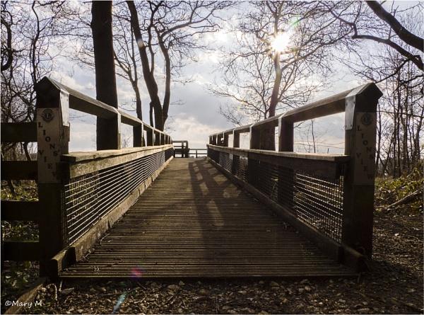 Boardwalk by marshfam19