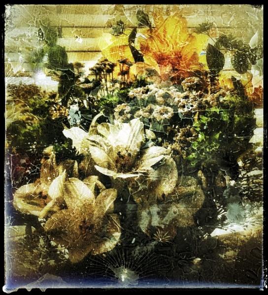 Letter Box Bouquet by Monochrome2004