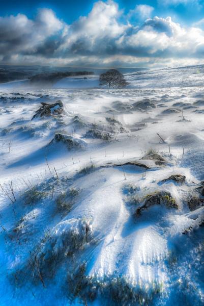 Snowdrift by Legend147