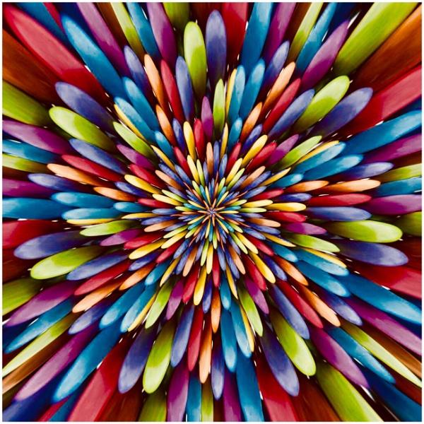 "\""Smartie Flower\"" by Willmer"