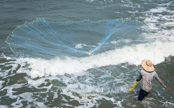 Casting the Net by jasonrwl