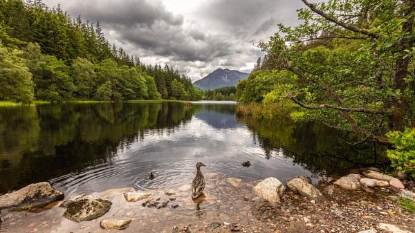 On Lochdown! by pdunstan_Greymoon