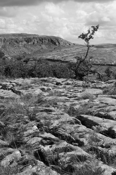 Limestone Vista by mikekay