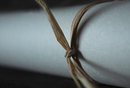 Photo : String