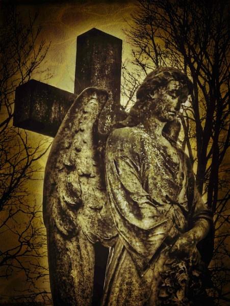 The Angel by adagio