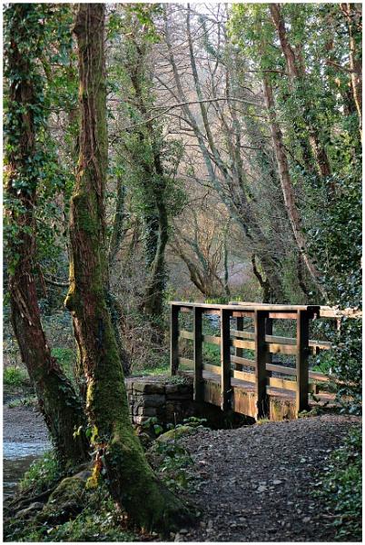 Dtrim Foot bridge by Vince52