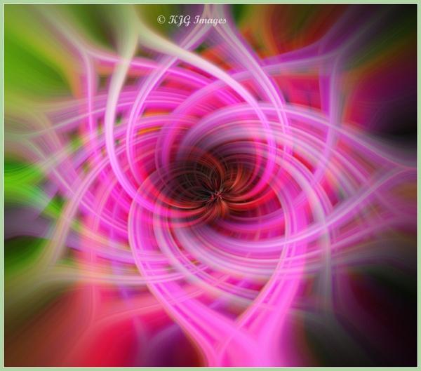 Osteospurmum Twirl by kaz1