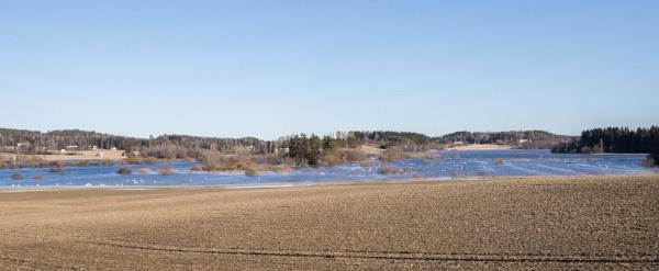 Swan lake. by Jukka