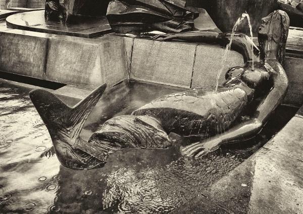The \'Drunken\' Mermaid by Philip_H