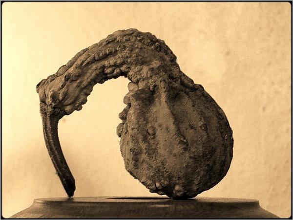 pumpkin sculpture by FabioKeiner