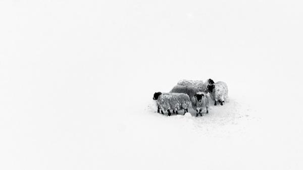 Wanlockhead by TrotterFechan