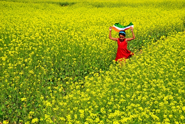 JOY WITHIN YELLOW by Chinmoy