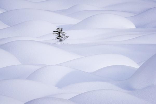 Solitude... by musiqfan23