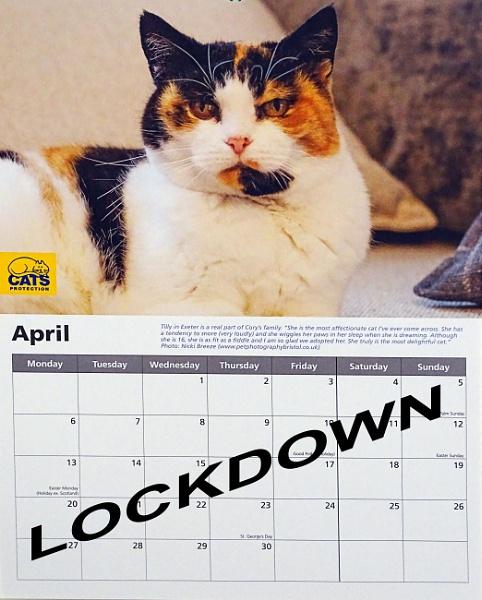 Lockdown by Cephus
