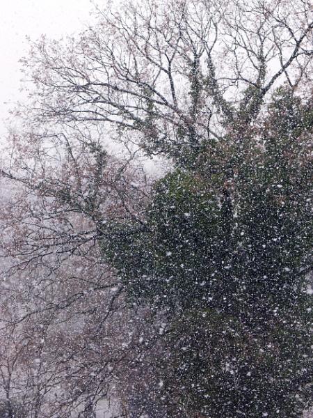 30 March. Snowing in Berlin by FotoDen