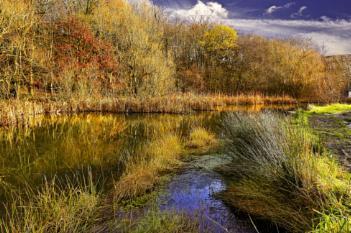 """An Autumn Afternoon ""."