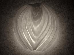 Photo : Onion
