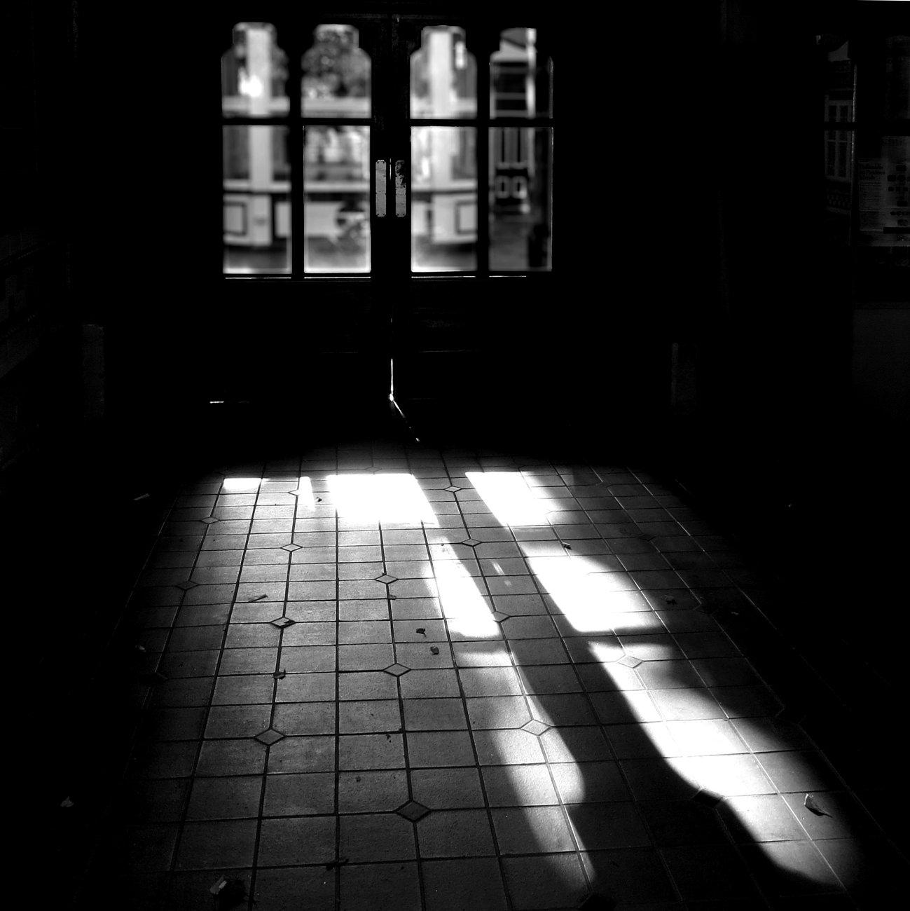 Saturday Shadows