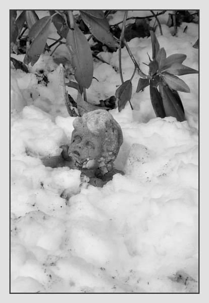 Ice-o-lation by Joline